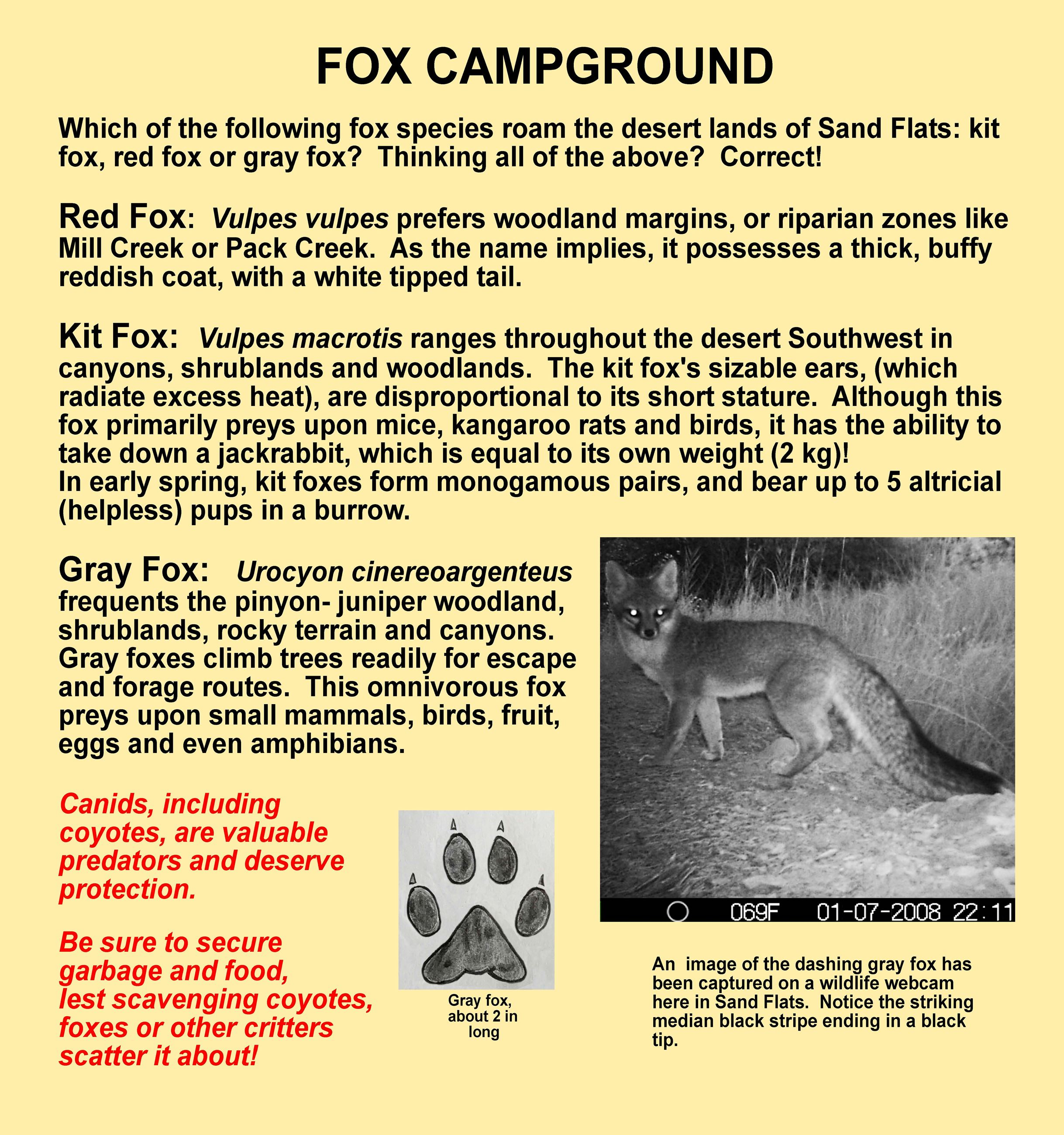 Fox Campground